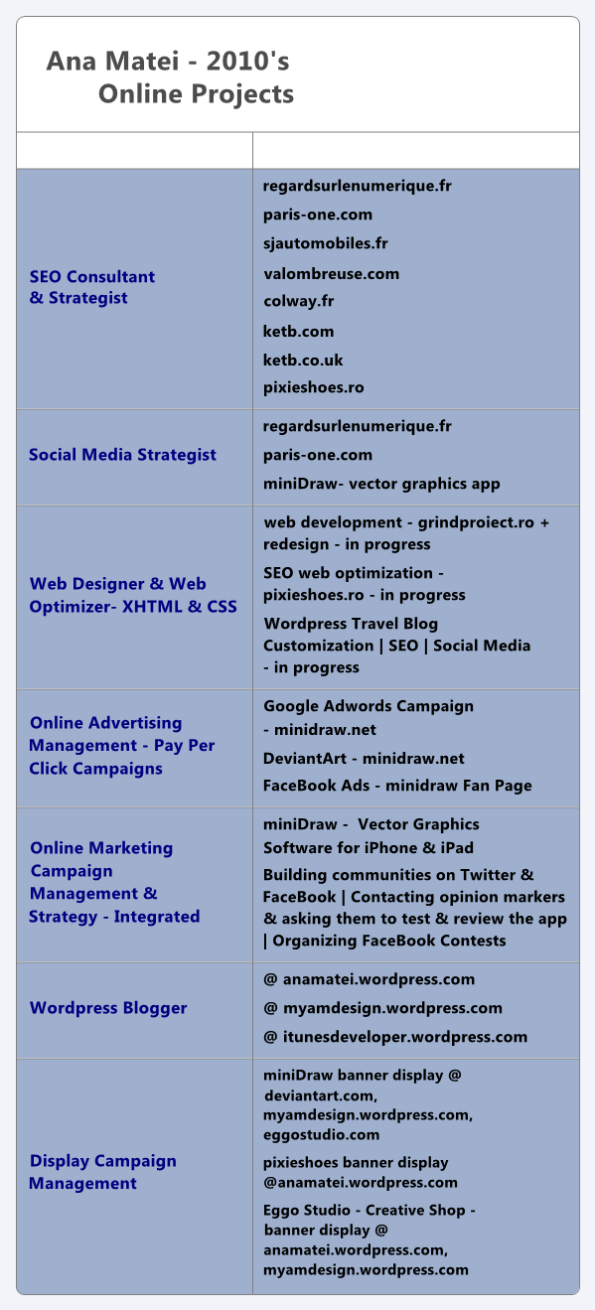 Online Marketing Projects 2010- SEO, Social Media & Web Design - Ana Matei